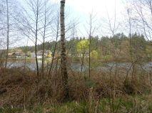 teich, pond, étang, laghetto, stagno, waldviertel, nagelberg,