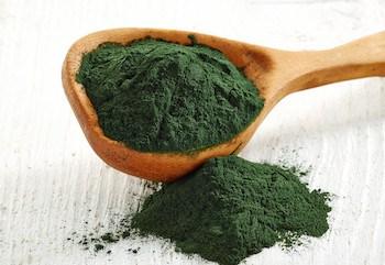 Algae Food