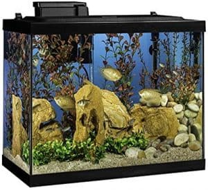 Tetra Aquarium