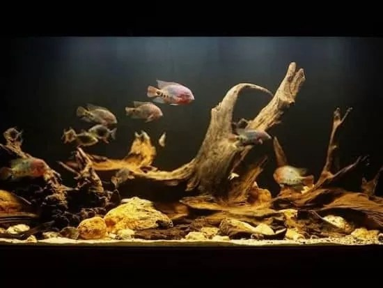 How to Tie Down Wood in an Aquarium