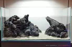 Lava Rocks are Beneficial for Aquarium