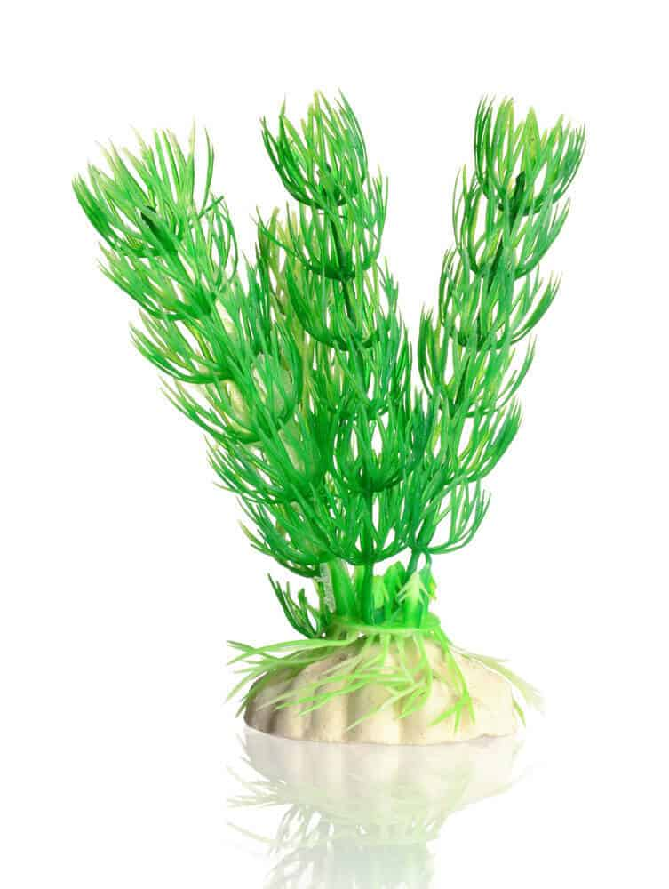 How do you clean new aquarium plants made of plastic
