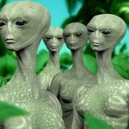 Alien Contact Org ~ 12/20/14 ~ Suzanne Chancellor, TJ,Janet & Guests