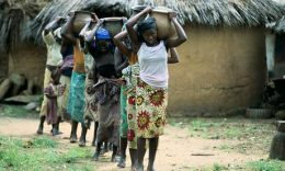 MDG : Water scarity in Africa : Nigeria : Young women and girls carry water