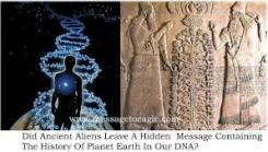 DNA Message images