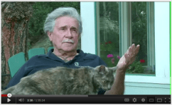 RalphRing-cat1