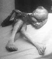 alien_body_on_bed