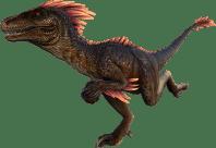 raptor (1)