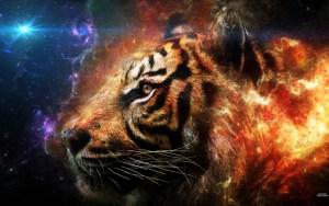 Tiger-animals-33788437-1440-900