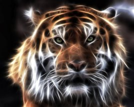 fractal_tiger_by_mceric