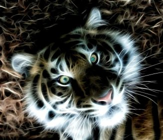 fractal_tiger_by_schnupphase