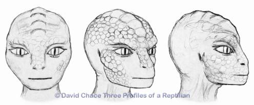 Chace-Three-Profiles-Reptilian