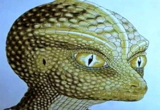 reptilians among us