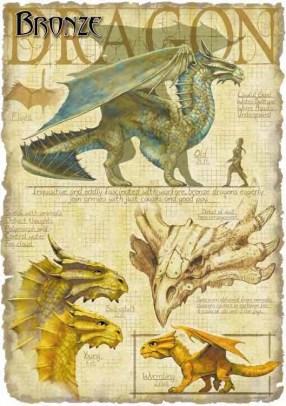 Dragons-a0ee195c5b32
