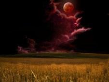 Shemitah-blood_moon
