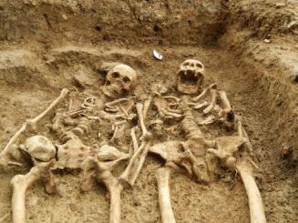 Giants Giant skeletens lostchapelsk