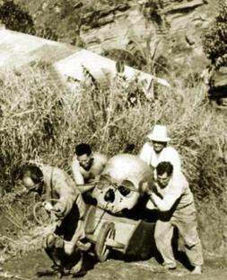 Giants Skeletens 251878_286540624802775_1605152021_n1