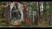 Kewaunee & Kelly Lapseritis bigfoot-mqdefault