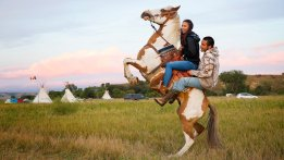 standing-rock-bucking-horse-pipeline