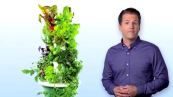 Mark Soler Tower Garden Specialist maxresdefault