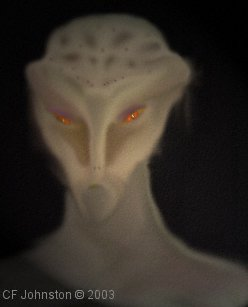 Tall White Reptilian Aliens tall-grey-alien
