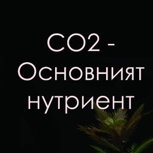 Въглероден диоксид