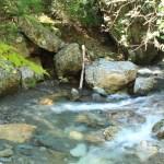 アクアリウム 岩