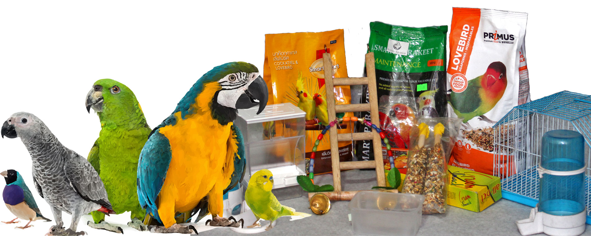 Large collection of Bird product available in aquarium.com.bd