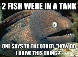 http://blog.aquanerd.com/wp-content/uploads/2013/05/Bad-Joke-Eel-Fish-Drive-Tank.jpg