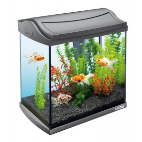 http://www.lotsforpets.co.uk/images/tetra-aqua-art-30-litre-starter-aquarium-fish-tank-p473-1259_zoom.jpg