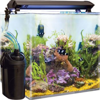 8 Best Canister Filters for Aquariums  2018 Reviews Top