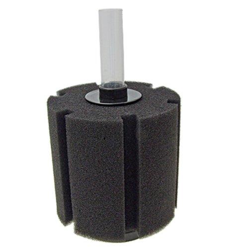 small resolution of sponge filter aquarium sponge filter