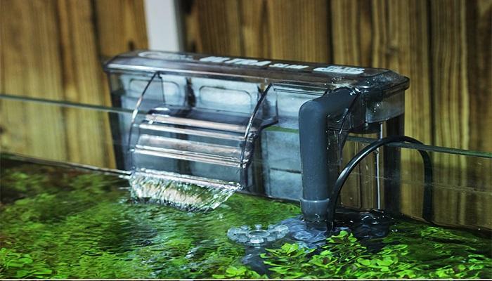 Planted Nano Tank- How to Start an aquascaping planted nano tank?