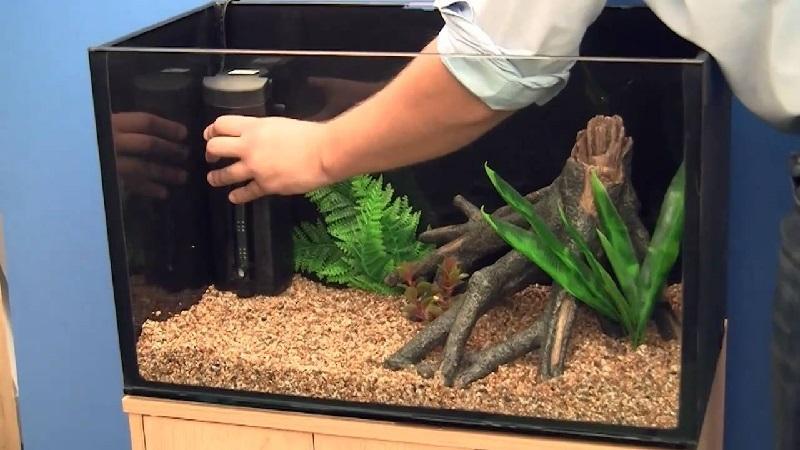 nano fish tank