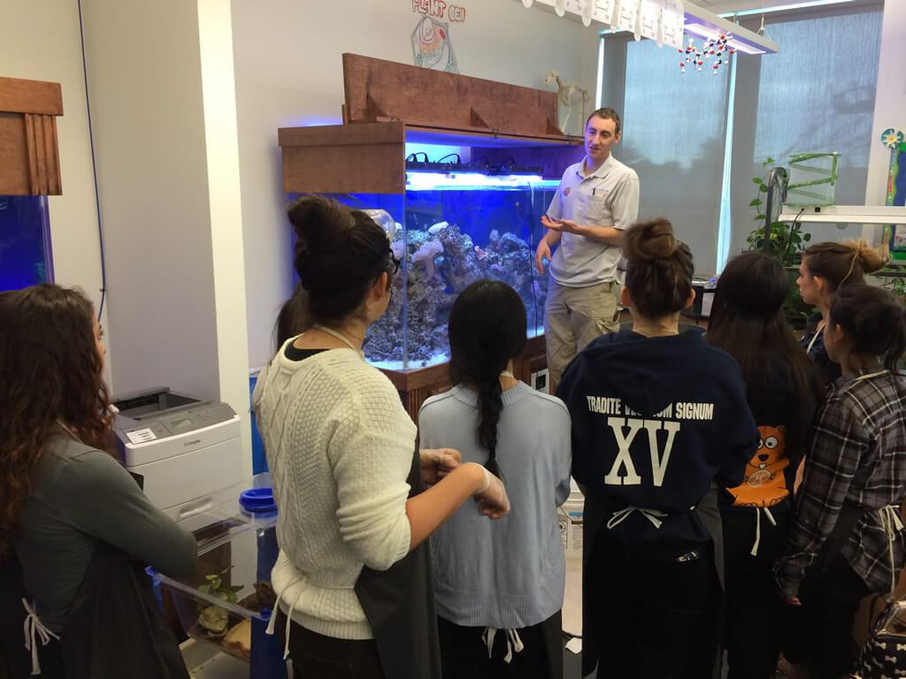 Teaching AP Bio