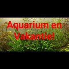Aquarium vakantie blog