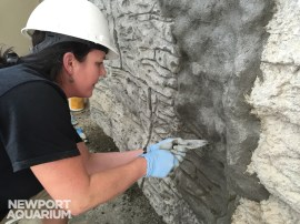 Biologist Jen Hazeres is perfecting the technique for creating rockwork decor out of normal concrete.
