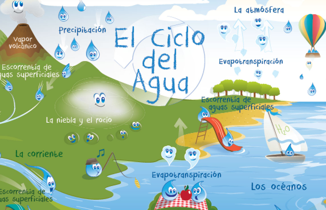 hight resolution of water cycle poster for kids english spanish