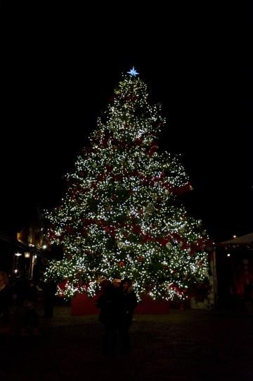 The beautiful Christmas tree lit up at night.