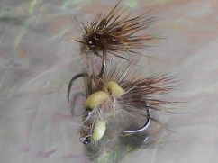 Balloon Caddis Aquas Viventes