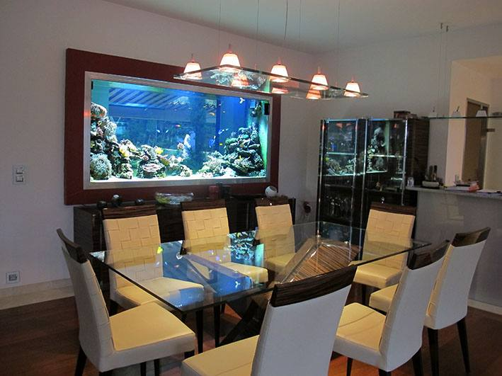 Fabrication Vente Aquariums Eau De Mer Recifal Odyssee