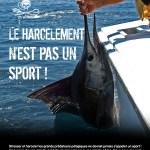 harcelement_pas_sport_1000