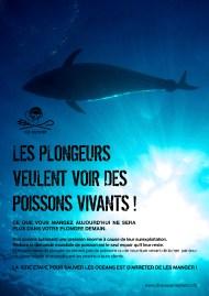 plongeur_voir_poissons_vivants_1000
