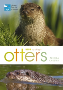 RSPB Spotlight Otters