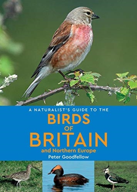 Birds of Britain and Northern Europe