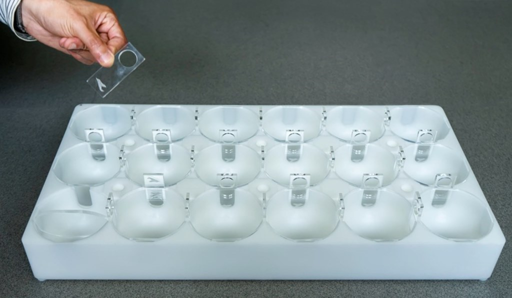 ICMAN-CSIC and Aquatic BioTechnology create the innovative HeMHAS system