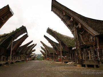 Kete Kesu - vesnice s tradičními Tongkonany (domy) Torajů na Sulawesi