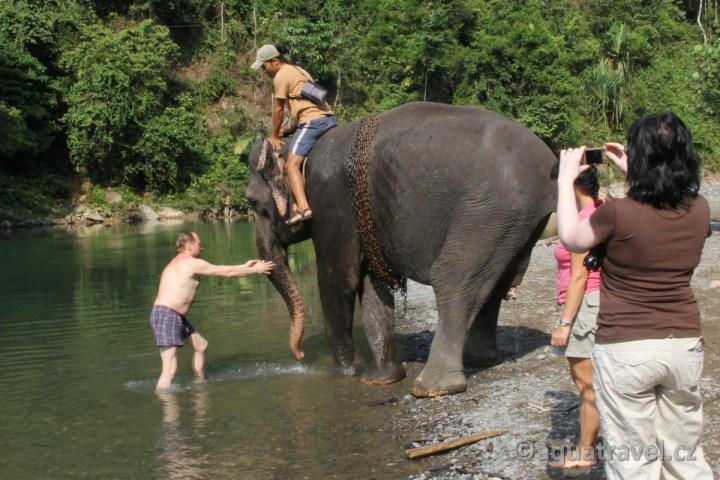 Mytí slonů na Sumatře