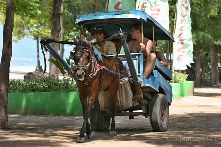 Vyjížïka s koníkem na ostrovì Trawangan pøed cestou na ostrov Bali.