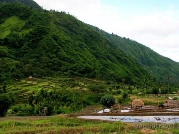 Bali údolí Bangle